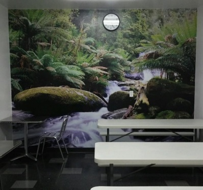 Printed Wallpaper - wall mural serving Riverside CA. and surrounding areas